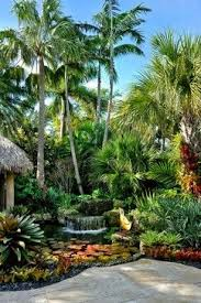 397 best tropical landscaping ideas images on pinterest tropical