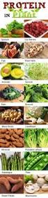 best 25 healthy food list ideas on pinterest food shopping list
