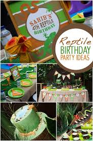 a reptiles and amphibians birthday party spaceships and laser beams