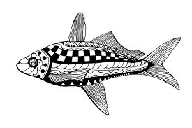 hand drawn fish illustrations creative market