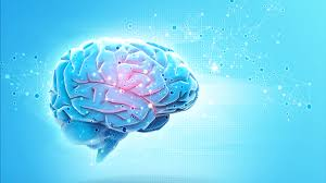 Brain Mapping New York Times Writer To Discuss Brain Mapping Nebraska Today