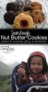 sourdough nut butter cookies 3 variations traditional