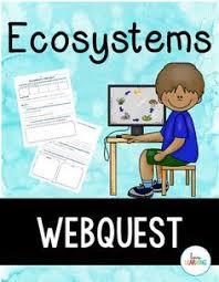 ecosystem webquest 28 images rainforest ecosystems webquest