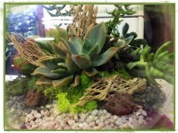 resume modernos terrarios suculentas terrario con suculentas suculentas arreglos y arreglos florales