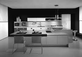 free download kitchen design software 3d new kitchens kitchen styles pictures l shaped galley kitchen