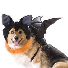 Extra Large Dog Costumes Halloween Halloween Costumes Dogs Humans
