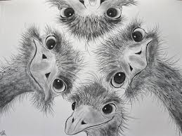 985 best potloodtekeningen van dieren pencildrawings of animals
