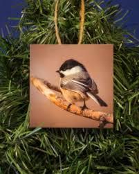 tree ornaments kotzian photo