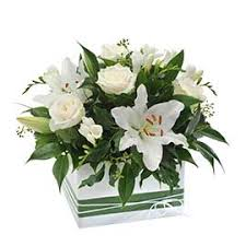Flowers For Delivery White Flowers For Delivery Interflora Australia
