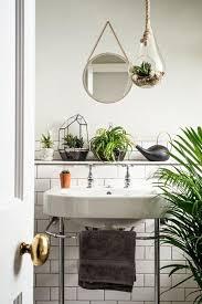 Bathroom Flowers And Plants Best 25 Bathroom Plants Ideas On Pinterest Plants In Bathroom