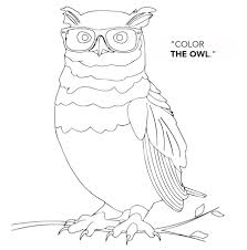 color the owl contest at america u0027s best