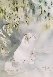 great pyrenees rescue provides wonderful dogs to good homes great pyrenees rescue provides wonderful dogs to good homes