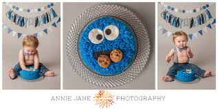 cookie monster cake carter annie jane photographyannie jane