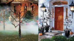 halloween trees are a spooky holiday hit video abc news