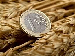 Financiering 3 Manieren Om Te Groeien Zonder Financiering Sprout