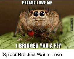 Spider Bro Meme - 25 best memes about spider bro spider bro memes