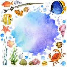 Exotic Theme Exotic Fish Coral Reef Algae Unusual Sea Fauna Sea Shells