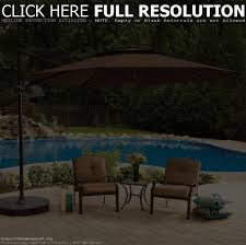 Offset Patio Umbrella With Mosquito Net by Patio Umbrella Mesh Netting Patio Outdoor Decoration