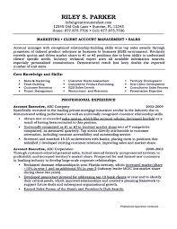 Sales Coordinator Sample Resume Senior Advertising Manager Sample Resume 22 Vp Sales Resume Vice
