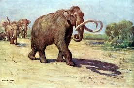 group suggests adding tag resurrected extinct animal names