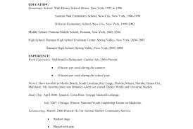 resume resume for cashier ravishing resume example cashier