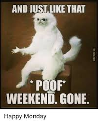 Monday Meme - and just like that poof weekend gone happy monday meme on me me