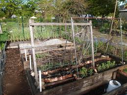 tomato trellis designs best garden trellis design ideas u2013 three