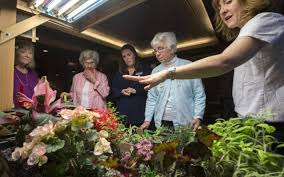 tacoma indoor garden business lets seniors flower year round the