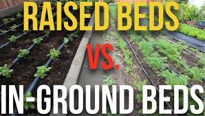 What Is Urban Gardening Raised Beds Vs In Ground Beds Youtube