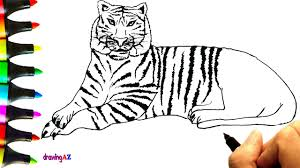 how to draw a tiger and coloring with colored tiger coloring