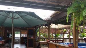 mike u0027s backyard tiki bar plantation fl youtube