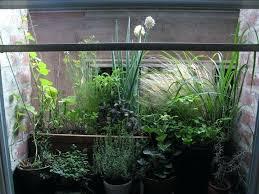 window herb gardens indoor gardens for apartments indoor apartment garden near window