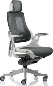 Ergonomic Mesh Office Chair Design Ideas Desk Chair Ergonomic Desk Chair Office Chairs Wondrous Design