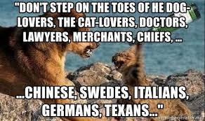 Dog Lover Meme - don t step on the toes of he dog lovers the cat lovers doctors