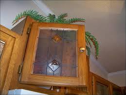 Replacement Oak Cabinet Doors Kitchen Replacement Kitchen Cabinet Doors With Glass Inserts Oak