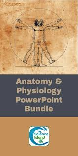 best 25 anatomy and physiology textbook ideas on pinterest