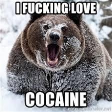 Bear Cocaine Meme - i fucking love cocaine cocaine bear meme generator