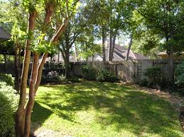 Backyard Shade Trees Dan Cindy Home Tours