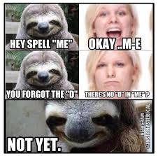 Sloth Jokes Meme - sloth jokes lol s pinterest sloth funny jokes and memes
