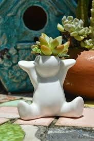 Succulent And Cacti Pictures Gallery Garden Design 39 Best The Succulent Artist Images On Pinterest Cacti Cactus