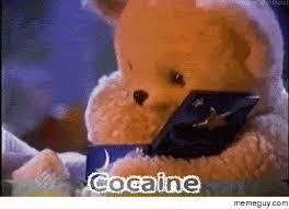 Bear Cocaine Meme - cocaine meme guy