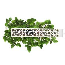 amazon com click u0026 grow smart herb garden indoor grow kit with