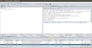 sans testing modern web application