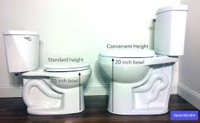 truly unbiased toilet reviews toilet found