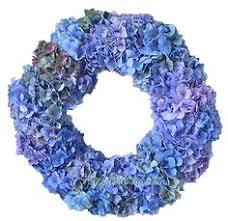 Bulk Hydrangeas Blue Hydrangeas For Weddings Bulk Hydrangea Flowers Fresh Cut