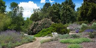 Southern California Botanical Gardens by Must See Gardens In California