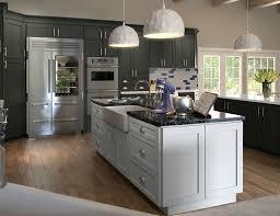 Pre Assembled Kitchen Cabinets Gray Kitchen Cabinets Pre Assembled U0026 Ready To Assemble Rta