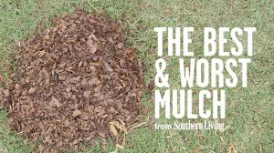 What Kind Of Mulch For Vegetable Garden by The Best And Worst Mulch For Your Garden Southern Living