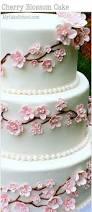 Cake Icing Design Ideas 679 Best Cake Design Ideas Images On Pinterest