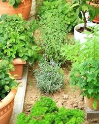 Garden Plans Zone - flower garden plans zone 7 usda hardiness zone 7b plants hardiness